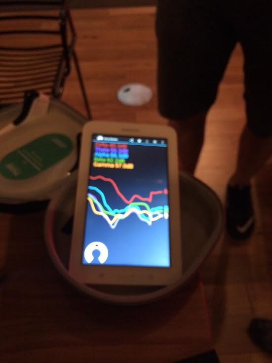 My brainwaves on a tablet.